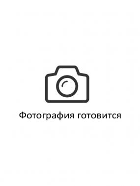 Шаповалова Елена Игоревна